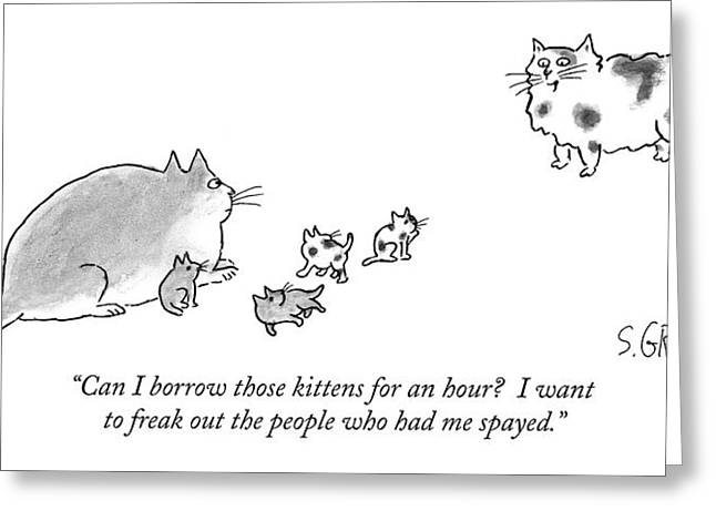 Can I Borrow Those Kittens For An Hour?  I Want Greeting Card by Sam Gross