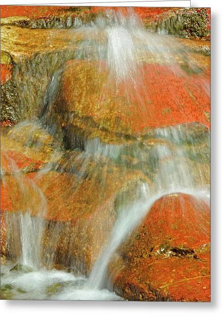 Canada, Alberta, Waterton Lakes Greeting Card by Jaynes Gallery