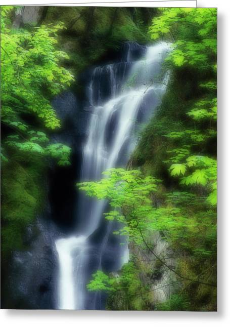 Canada, British Columbia, Langford Greeting Card by Jaynes Gallery
