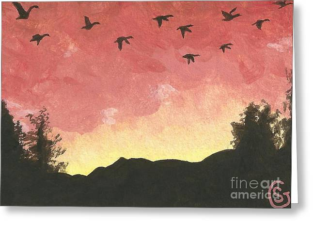 Canada Geese -- Looking For Lodging For The Night Greeting Card by Sherry Goeben