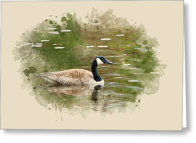 Canada Goose Watercolor Art Greeting Card by Christina Rollo