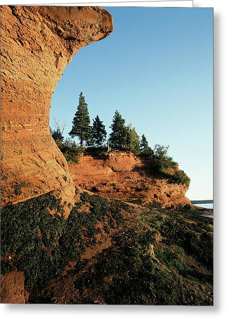 Canada, New Brunswick, Bay Of Fundy, St Greeting Card by Walter Bibikow