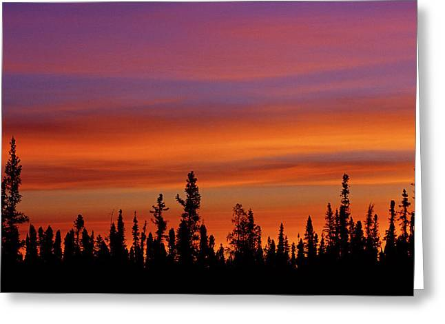 Canada, Northwest Territories, Ft Greeting Card by Jaynes Gallery