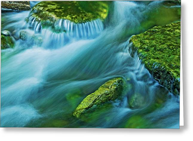 Canada, Ontario Kagawong River Scenic Greeting Card by Jaynes Gallery