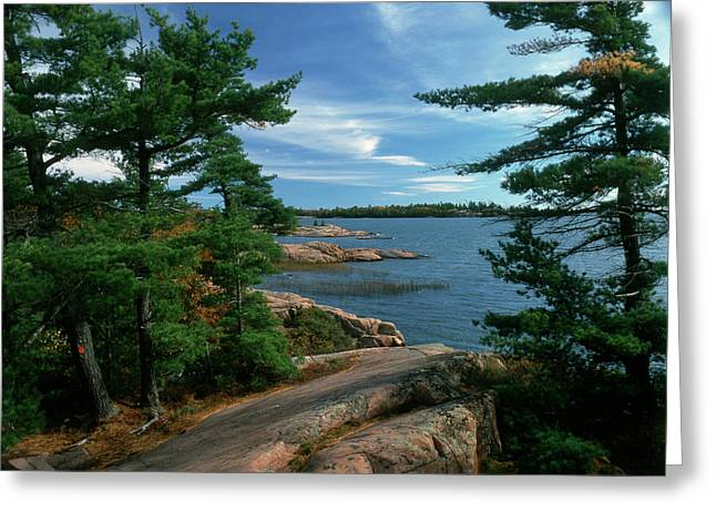 Canada, Ontario, Shield Country Greeting Card by Jaynes Gallery