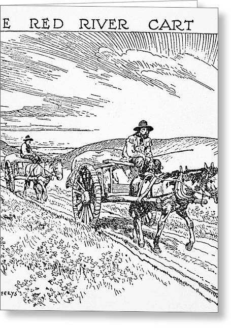Canada Red River Cart Greeting Card by Granger