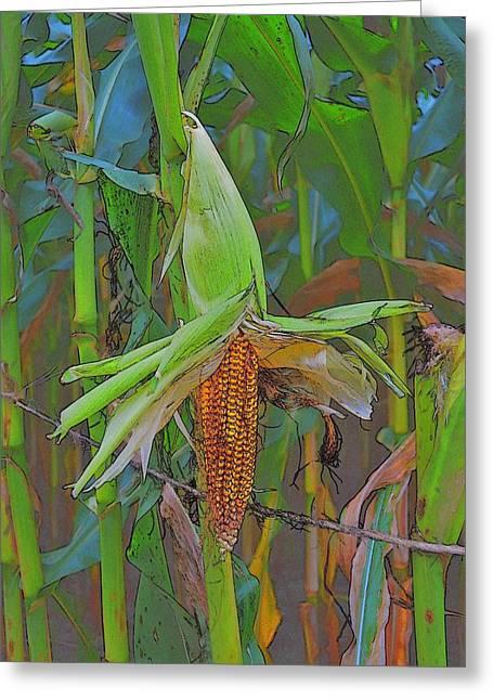 Candy Corn Greeting Card by Thomas  MacPherson Jr