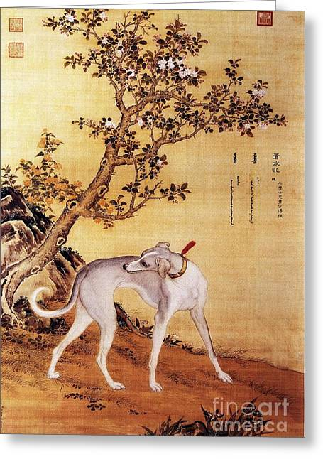 Cangshuiqiu - Royal Dog Greeting Card