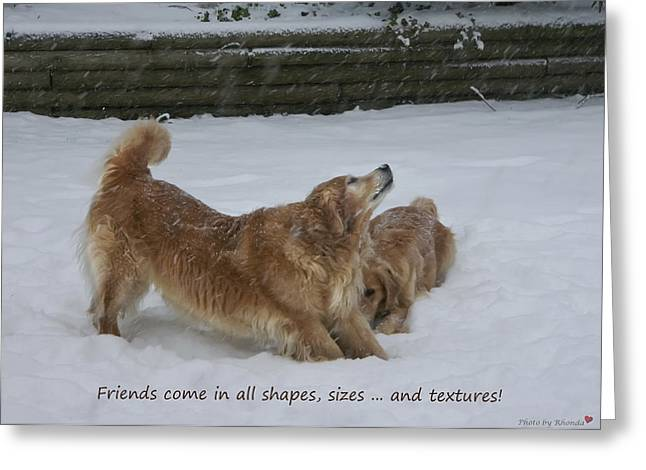 Canine Friends Greeting Card