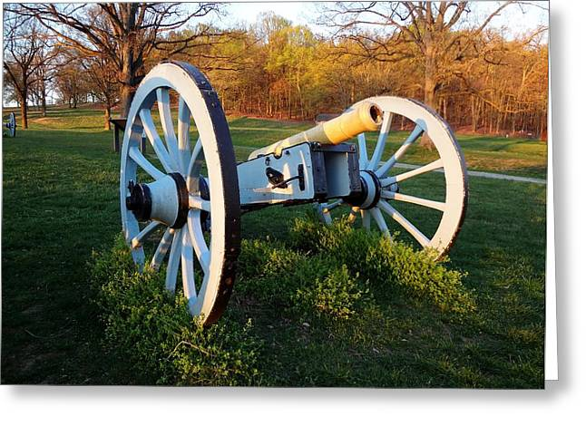 Cannon In The Grass Greeting Card by Michael Porchik