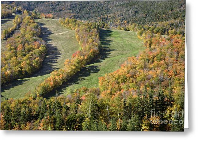Cannon Mountain - White Mountains New Hanpshire Greeting Card by Erin Paul Donovan