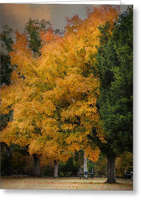 Cannon Under The Golden Tree - Autumn Scene Greeting Card by Jai Johnson