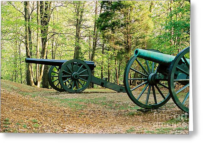 Cannons I Greeting Card by Anita Lewis