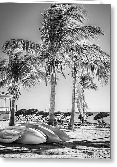 Canoes And Palms - Higgs Beach Key West - Black And White Greeting Card