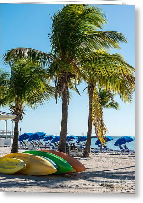 Canoes And Palms - Higgs Beach Key West  Greeting Card