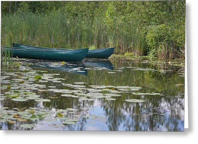 Canoes On Marshland Greeting Card