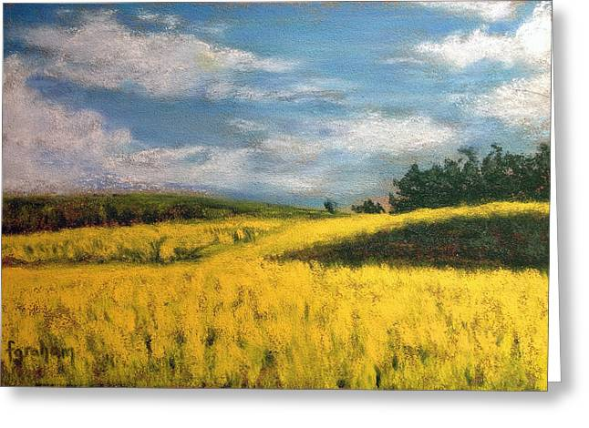 Canola Fields In Rimbey Alberta Greeting Card by Fiona Graham