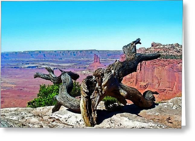 Canyon Lands National Park Greeting Card by Susan Leggett