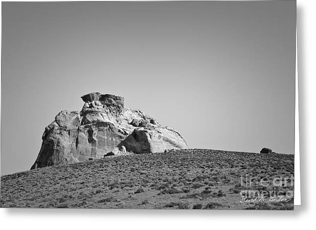 Canyon Point Utah IIi Greeting Card by Dave Gordon