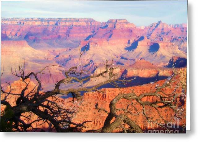 Canyon Shadows Greeting Card by Janice Sakry