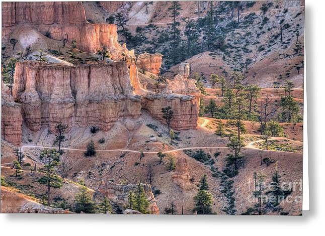 Canyon Trails Greeting Card by Wanda Krack