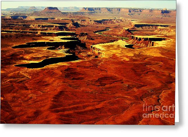 Canyonlands White Rim  Greeting Card by Terry Johnson