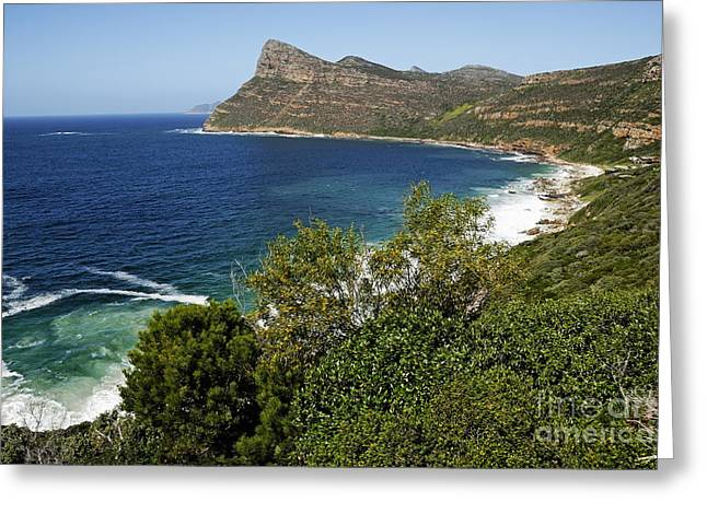 Cape And Cliffs Nearby Cape Point Greeting Card by Sami Sarkis