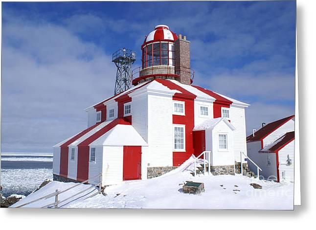Cape Bonavista Lighthouse Greeting Card by Annlynn Ward