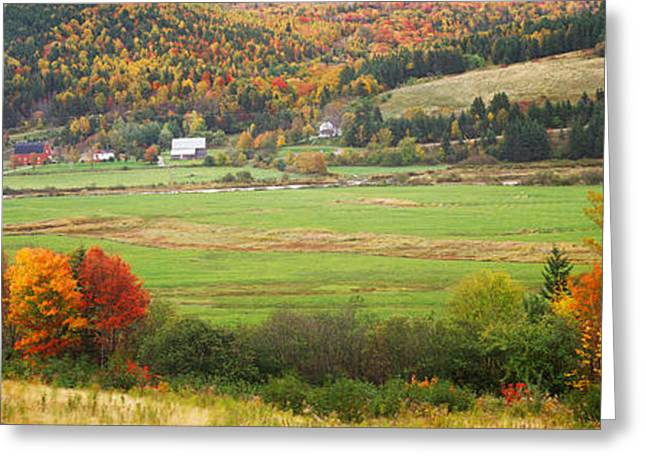 Cape Breton Highlands Near North East Greeting Card by Panoramic Images