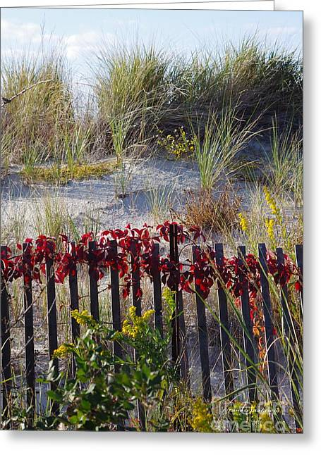 Cape Charles Autumn Greeting Card