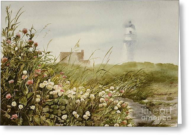 Cape Clover Greeting Card