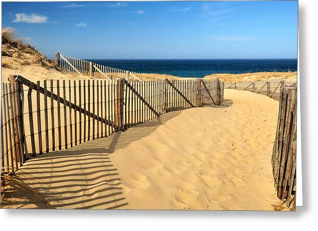 Greeting Card featuring the photograph Cape Cod Beach by Mitchell R Grosky