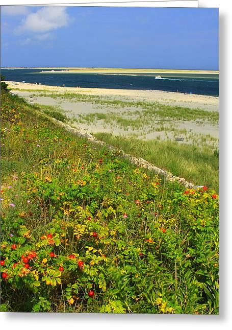 Cape Cod Lighthouse Beach Chatham Greeting Card by John Burk