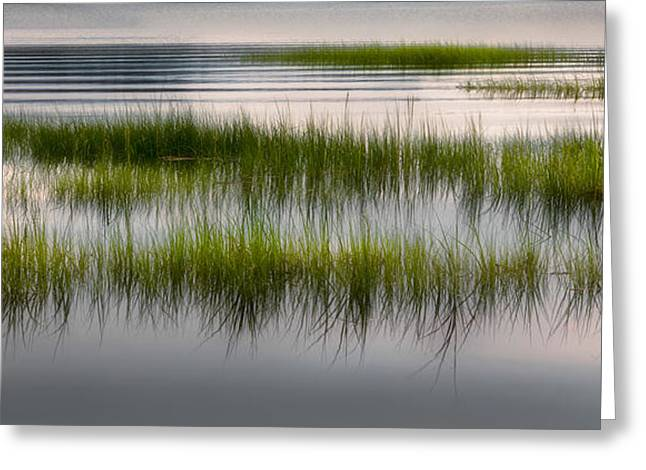 Cape Cod Marsh Greeting Card by Bill Wakeley