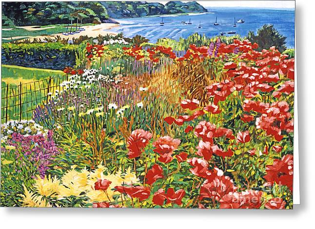 Cape Cod Ocean Garden Greeting Card