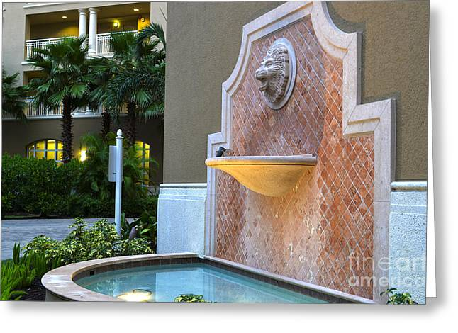 Cape Coral Florida Fountain Greeting Card by Timothy Lowry