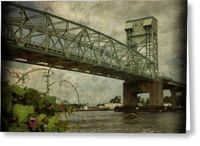 Cape Fear Morning Glory Greeting Card by Dorian Hill