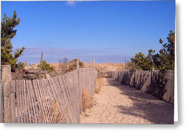 Cape Henlopen 1 Greeting Card by Cynthia Harvey