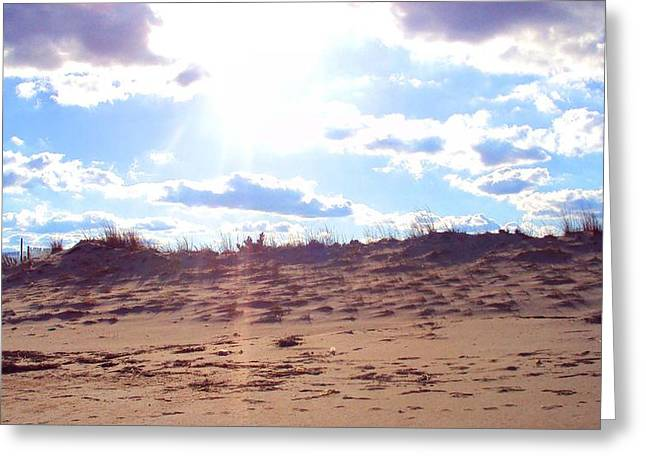 Cape Henlopen 11 Greeting Card by Cynthia Harvey