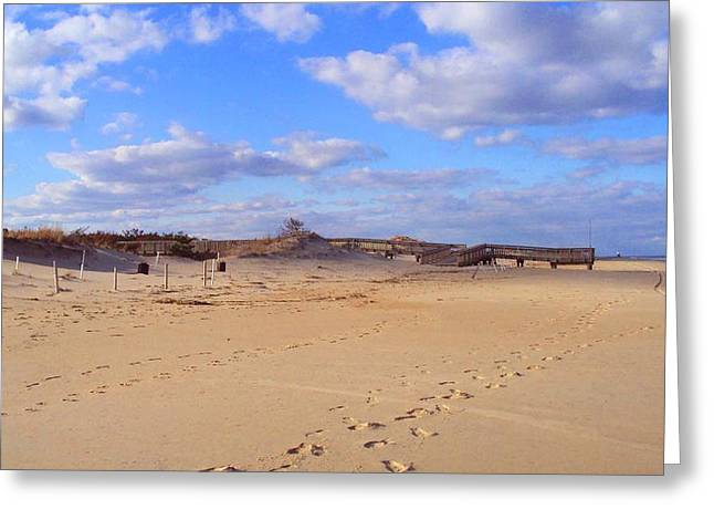 Cape Henlopen 12 Greeting Card by Cynthia Harvey