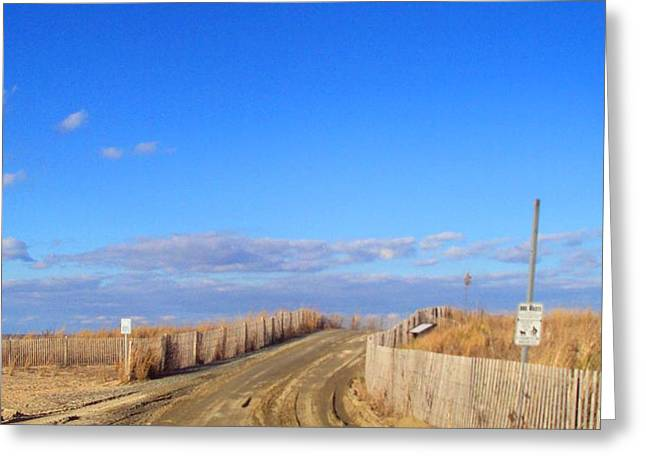 Cape Henlopen 13 Greeting Card by Cynthia Harvey