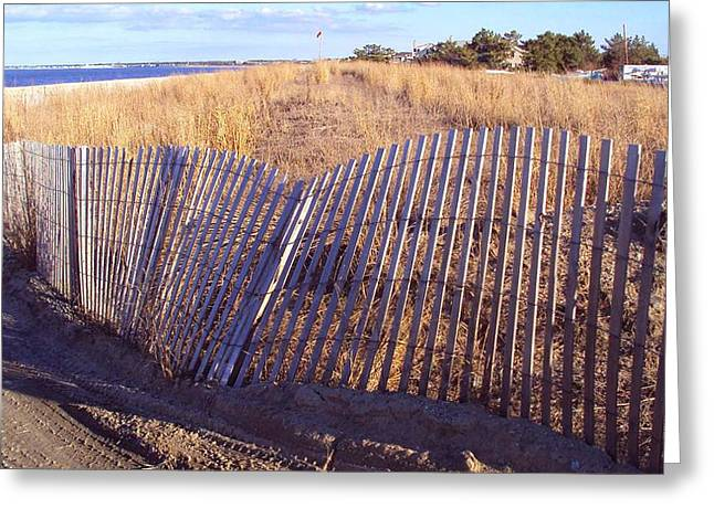 Cape Henlopen 14 Greeting Card by Cynthia Harvey