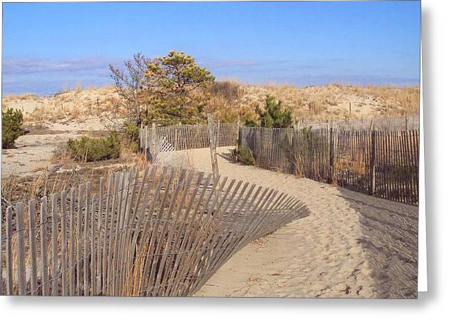 Cape Henlopen 2 Greeting Card by Cynthia Harvey