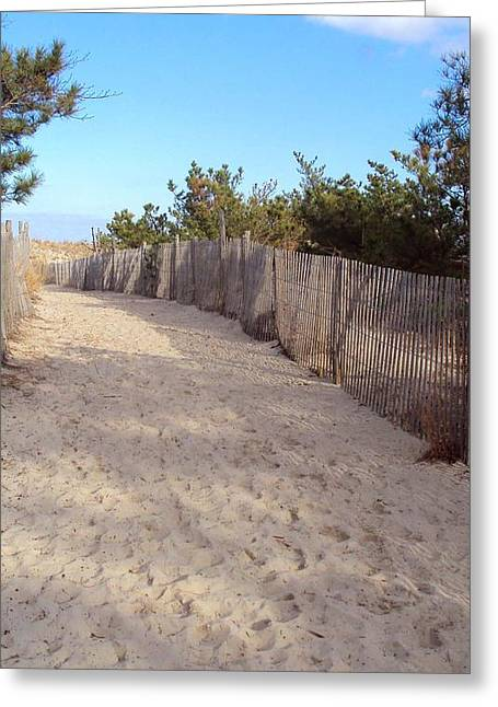 Cape Henlopen 5 Greeting Card by Cynthia Harvey