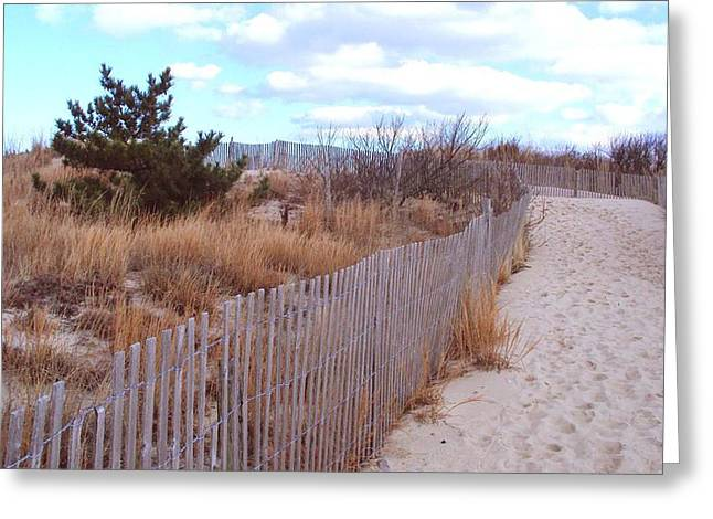 Cape Henlopen 6 Greeting Card by Cynthia Harvey