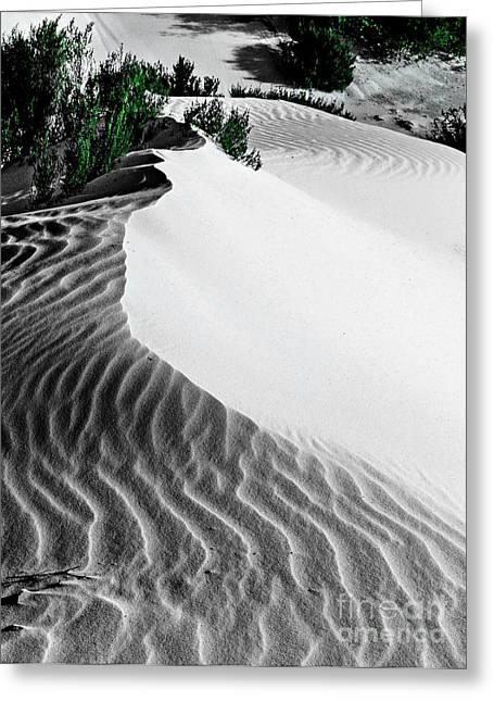 Cape Le Grande Sand Dune Greeting Card