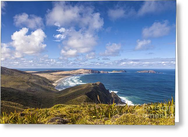 Cape Maria Van Diemen Northland New Zealand Greeting Card by Colin and Linda McKie
