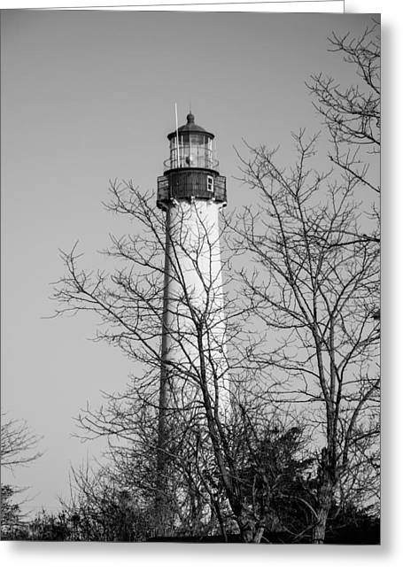 Cape May Light B/w Greeting Card