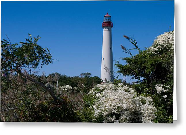 Greeting Card featuring the photograph Cape May Lighthouse by Greg Graham