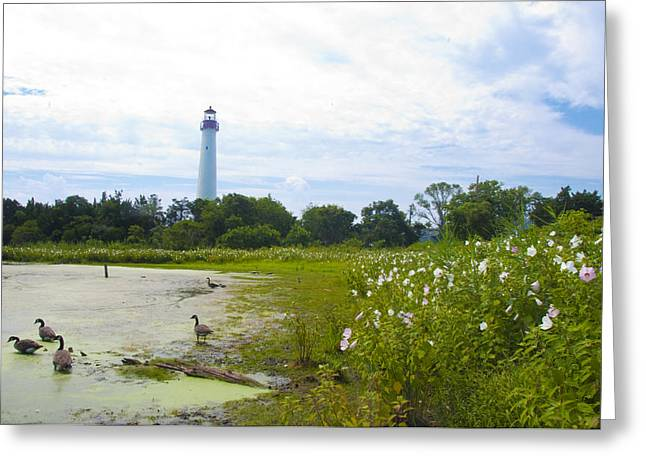 Cape May Lighthouse - New Jersey Greeting Card by Bill Cannon